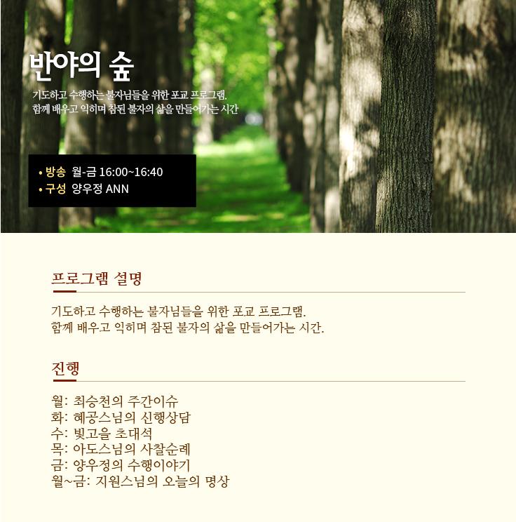 반야의-숲.png